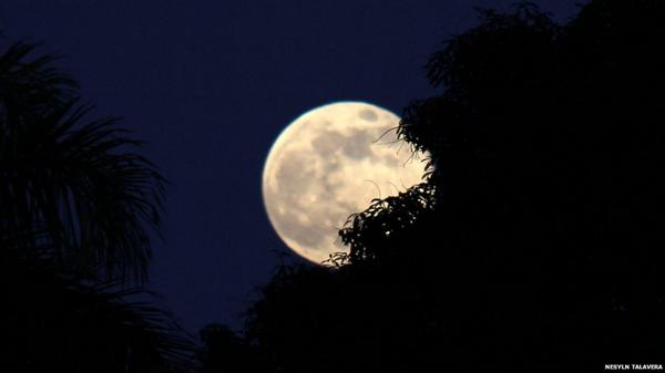 Thanks for all of your fantastic #supermoon2014 images. We've published a selection here: http://t.co/8ifNKNg03H http://t.co/wV7Cdiu4ow