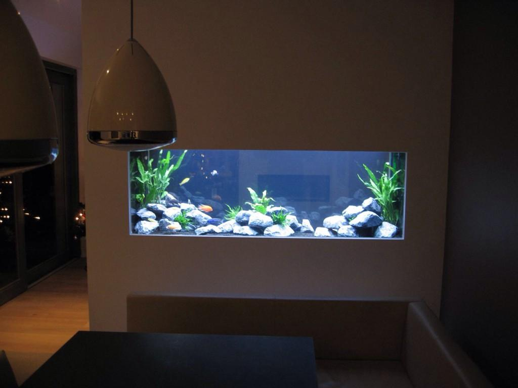 Heevis on twitter en nu 39 s avonds doorkijk aquarium for Aquarium interieur