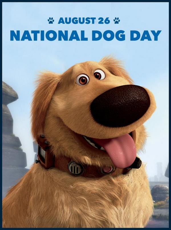 """I have just met you, and I love you."" #NationalDogDay http://t.co/ZRSbMrErIc"