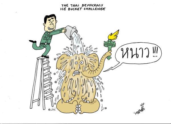 Ice Bucket Challenge Cartoon