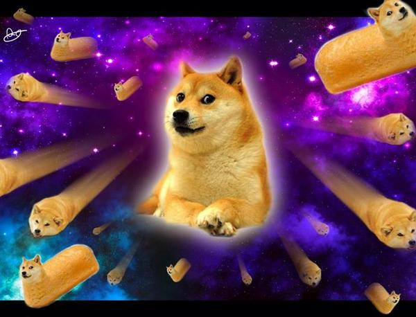 14011 doge in space - photo #11