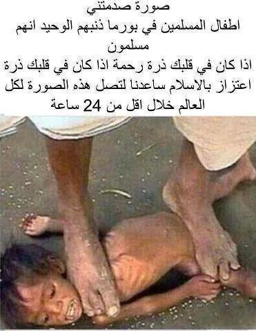 3401151175578 عراق موديلز - Iraqi ( I49168660)
