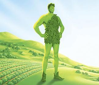 Greenbean Guy