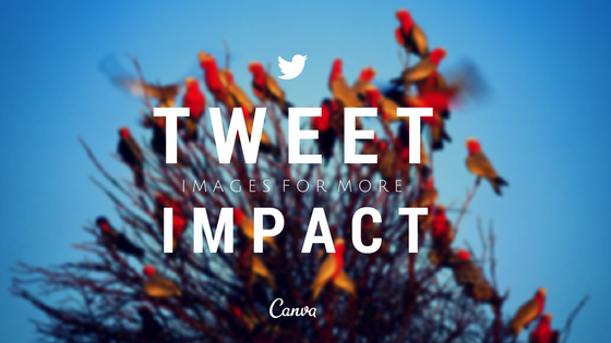 Canva on Twitter: