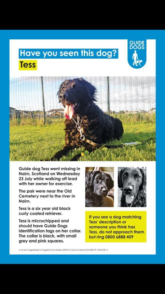 Please help @guidedogs and RT ...... We need to find her   We have a missing guide dog #FindTess. Pls RT.. Thanks x http://t.co/ubmFesgSmb