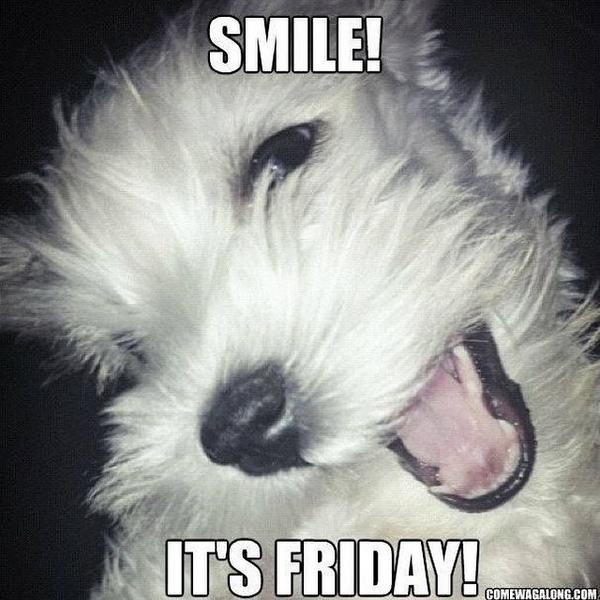 Finally Friday Funny Meme : Aww theawwapp twitter