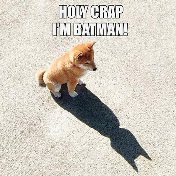 Holy crap... I'm Batman http://t.co/j7kbikfYA9