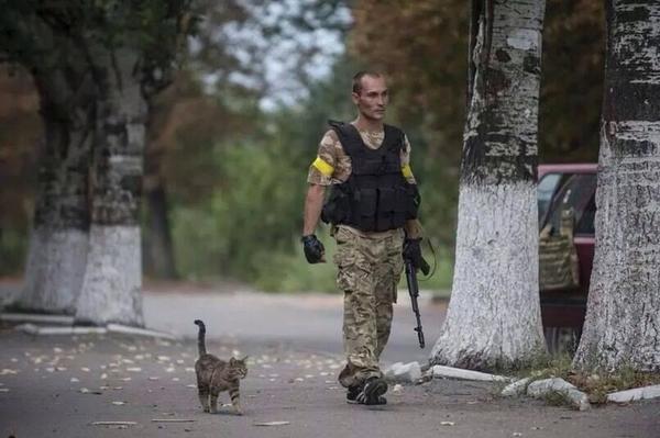 В Харькове задержана диверсионная группа, произведшая ряд терактов с использованием гранатометов и огнеметов, - МВД - Цензор.НЕТ 9055