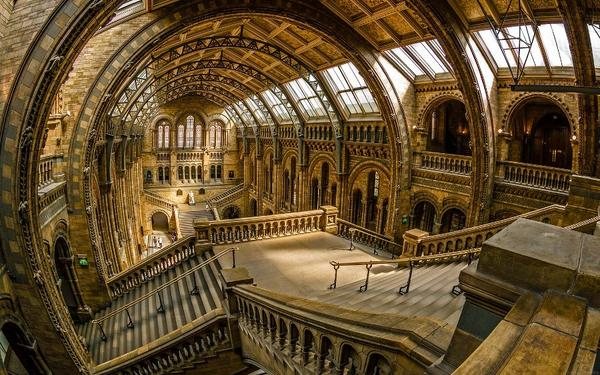 London Natural History Museum by arnrna v @Team_Viken  #Photography http://t.co/se1fz7hskS