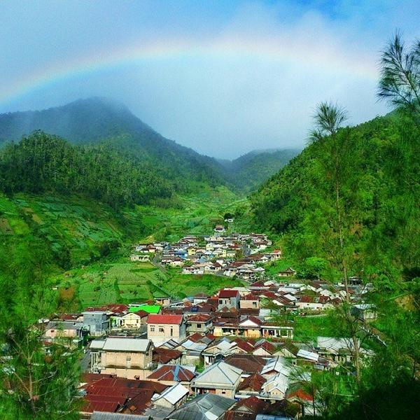 Dusun Wonomulyo