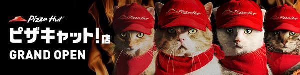 【本気の猫の手、貸してやるぜ!】「ピザキャット!」店、本日GRAND OPEN!!猫たちが全力でピザハットの運営にチャレンジ?! pizzacat.pzh.jp/?banner_id=201… pic.twitter.com/jU4XOcVgwb