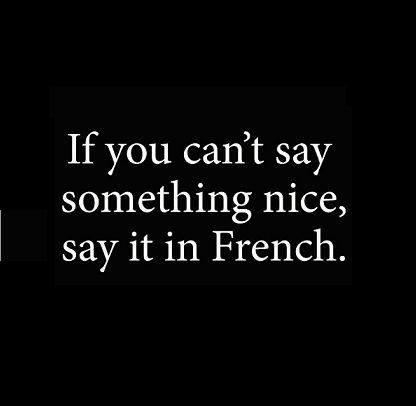 Image result for if you don't have something nice to say say it in french