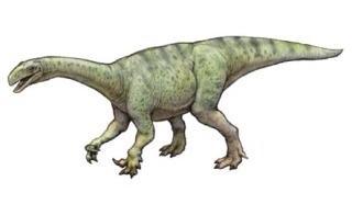 恐竜男 (@dinosaurman51)   Twit...