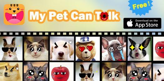 My Pet Can Talk (@my_pet_can_talk)   Twitter
