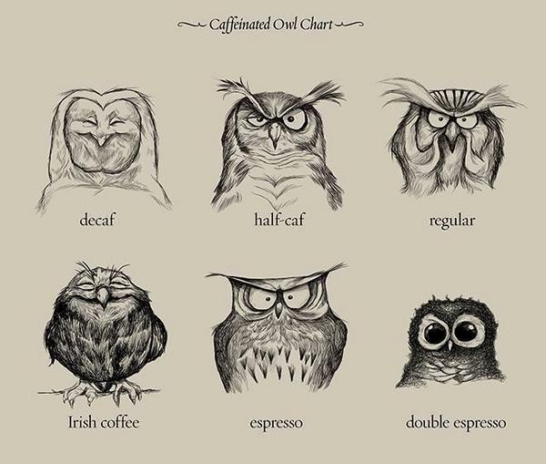 I think I need an Irish coffee RT @_BTO: RT @ThePoke: Good Morning. Hope this caffeinated owl chart helps. http://t.co/RZd2Er6Jng