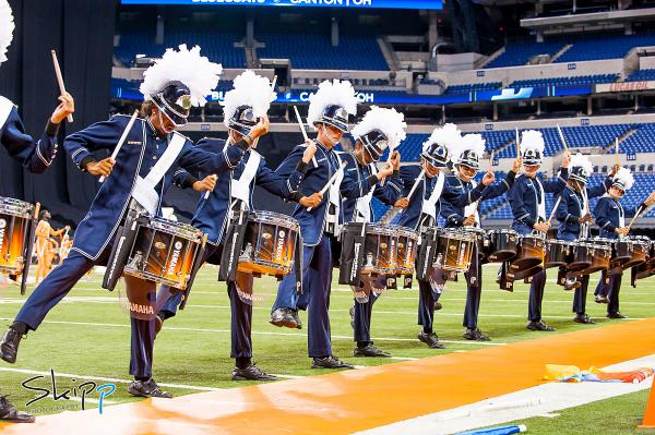 Image result for bluecoats 2014