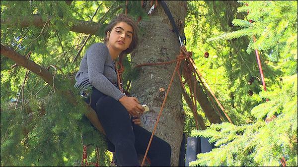 Teen ends protest, comes down from Bainbridge Island tree http://t.co/1dzdMP8VEV http://t.co/erQWZixF17