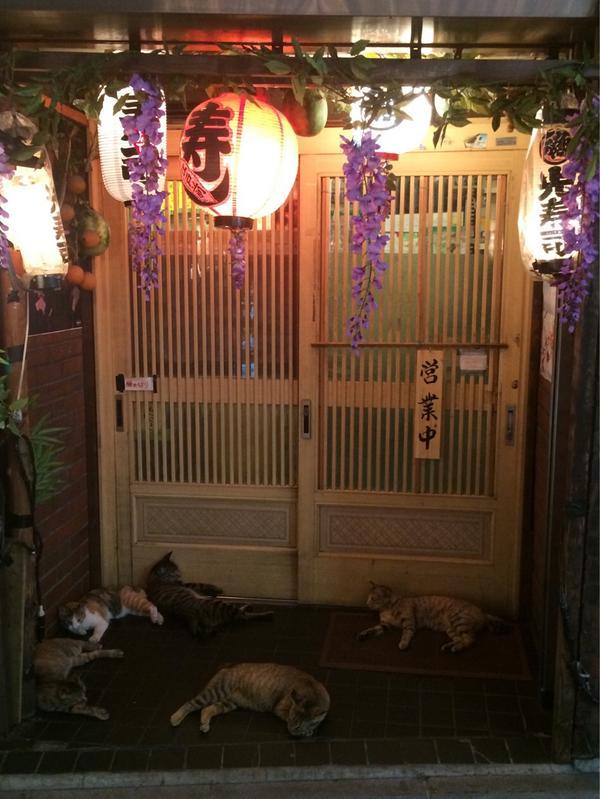 怖い集団がたむろってて寿司屋さんに入れない・・・ pic.twitter.com/VUYJWHguG3