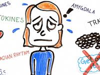 The Science of Depression http://t.co/MrGF5Tm6L6 http://t.co/46lpVD5Sb4
