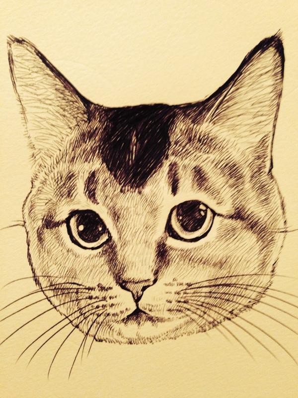 猫描いてる下書きしないでボールペンでいきなりw下書きって面倒でどうしても抜かしてしまう pic.twitter.com/yuWK2HpKG3