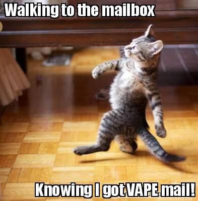 kitten vape mail