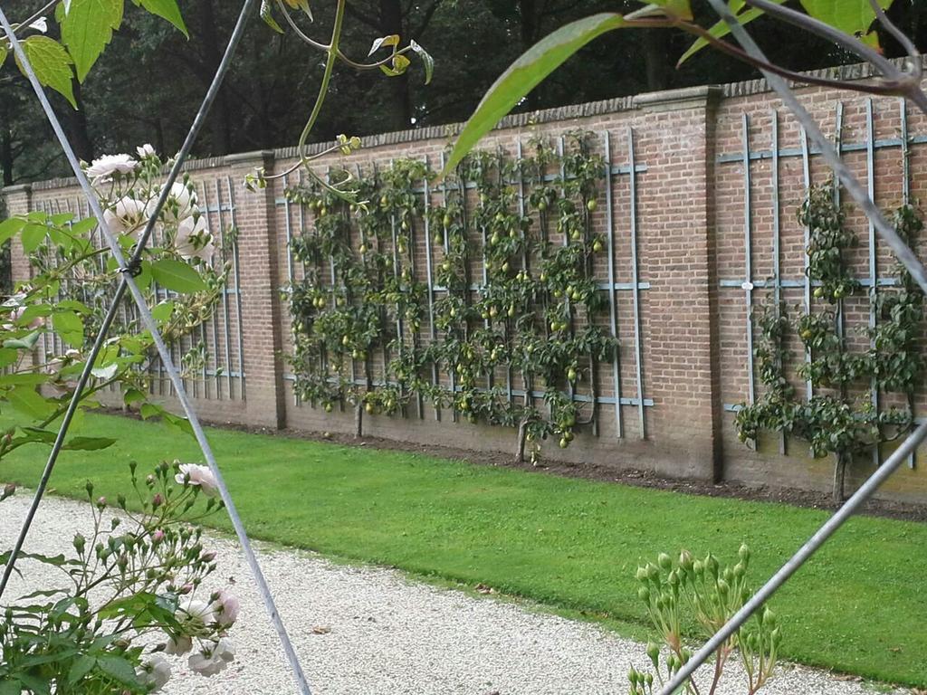 tuinmuur rechte fruitmuur Kasteel Twickel in Ambt Delden