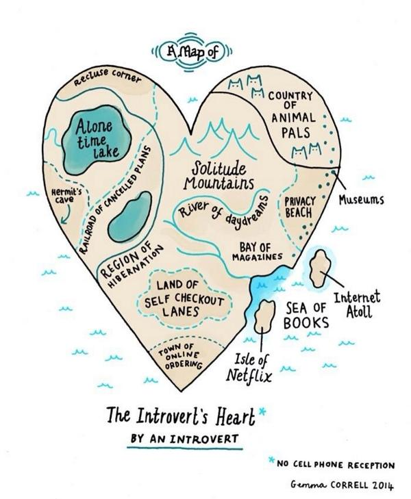 Gina The Machina On Twitter Anatomical Diagram Of My Introvert