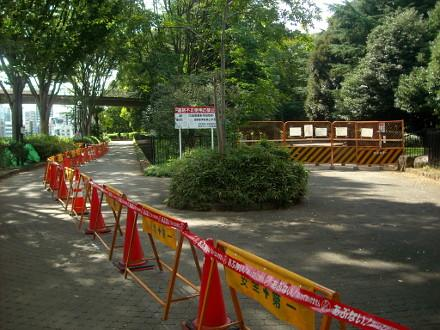 【ブログ更新】2014年9月5日、代々木公園に行ってきました。デング熱騒動で公園A地区は厳重封鎖。けれども隣の明治神宮は通常開園という摩訶不思議な状況… http://t.co/iGdiqKrvX7 http://t.co/nDISn17JAi