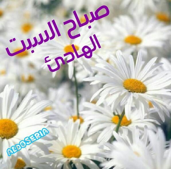 O Xrhsths ع م ر Sto Twitter حبيبي صباح الخير صباحك ورد وفل
