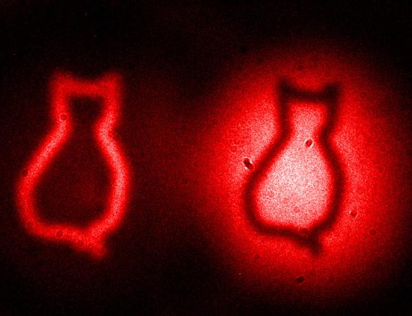 Image of Schrödinger's cat made with entangled photons. Object was never directly photographed http://t.co/CAc3y8SkE5 http://t.co/1Lr9iHrlr2