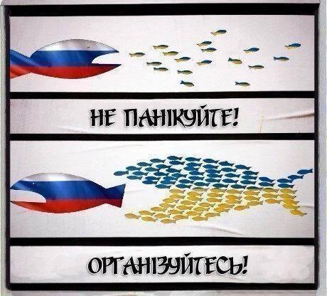 Между Донецком и Мариуполем начали ходить пассажирские автобусы, но ситуация остается напряженной, - ОГА - Цензор.НЕТ 830