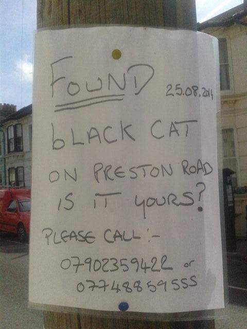 #Brighton - has anyone lost a black cat in the Preston Road area? This sign is in Campbell Road. #lostcat http://t.co/31Yz9iXsxM
