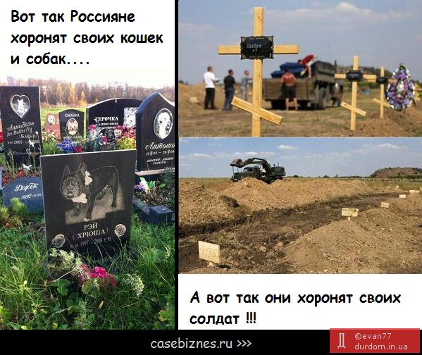 Террористы пять раз за ночь нарушили перемирие, обстреляв позиции украинской армии, - пресс-центр АТО - Цензор.НЕТ 6294