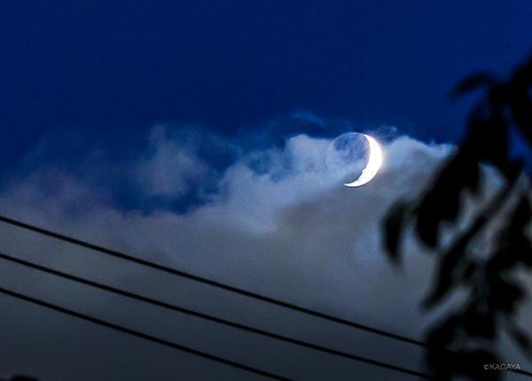 雲間に浮かぶ宵月。(今しがた東京にて撮影) pic.twitter.com/lynyCZOL3s
