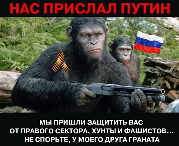 Пьяные наемники РФ заставили наблюдателей ОБСЕ ехать по заминированной дороге, - отчет СММ - Цензор.НЕТ 8328