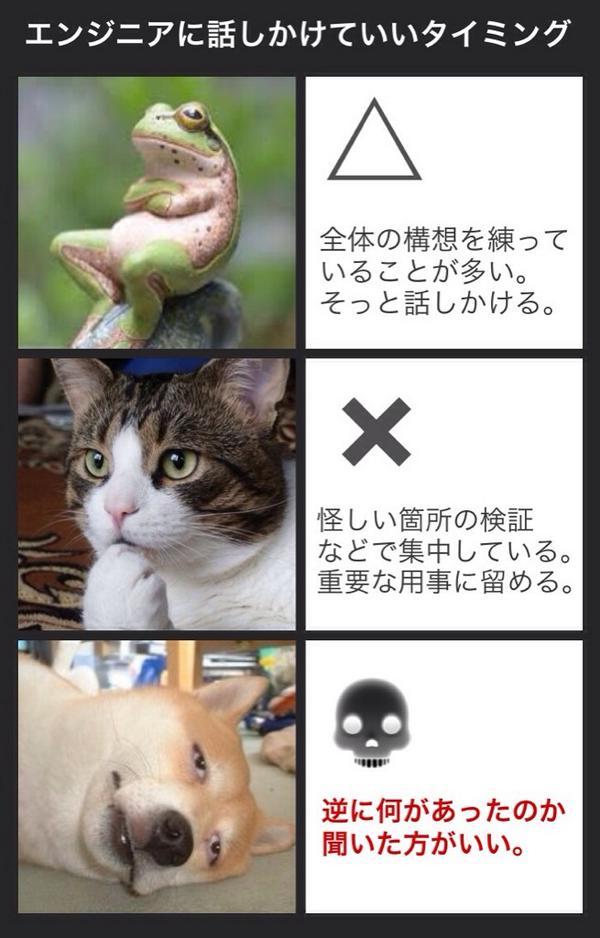 猫がかわええ RT @oshiroi_you: エンジニアに作業中話しかけていいタイミングを聞いたら大体こんな感じだったんだけど、プログラムに限らず作業中ってみんなこんな感じなのかもしれない。 http://t.co/WqMNg52B0Y
