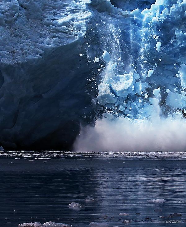 アラスカから帰ってきました。驚きの連続。刺激的な旅でした。写真は氷河が海に崩落する瞬間です。 pic.twitter.com/KhjSEmomLC