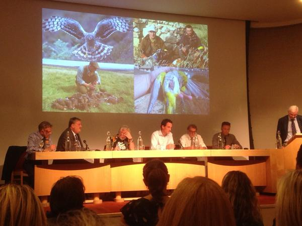 Panel discussion begins at #WLTcc debate focussing now on #HenHarrier persecution. http://t.co/6KJXKFYdsW