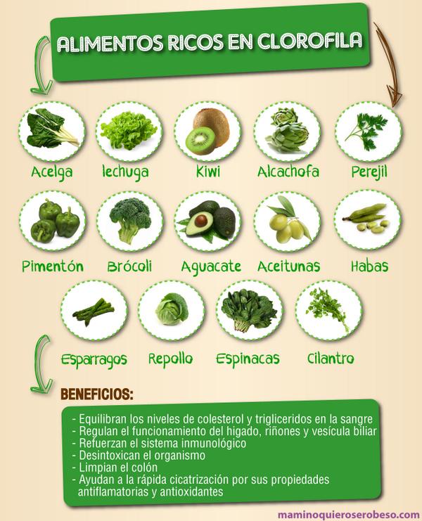 Maminoquieroserobeso on twitter alimentos ricos en clorofila refuerzan el sistema - Alimentos sistema inmunologico ...