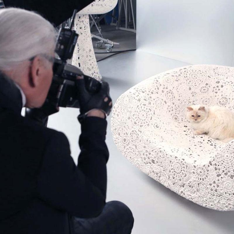 10 ways your life would be better if you were Karl Lagerfeld's cat, Choupette: http://t.co/M65e4uIRry http://t.co/0478JvDVtI