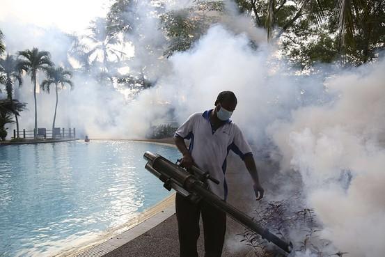 マレーシアでデング熱感染が急増、死者は前年の4倍に―新型ウイルスが一因 http://t.co/gexoJSzsG5 (Reuters) http://t.co/fUoNtwoFZ7