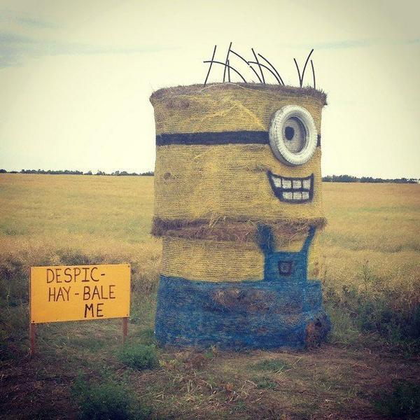 Despic-Hay Bale-me! http://t.co/on14zSLzB9