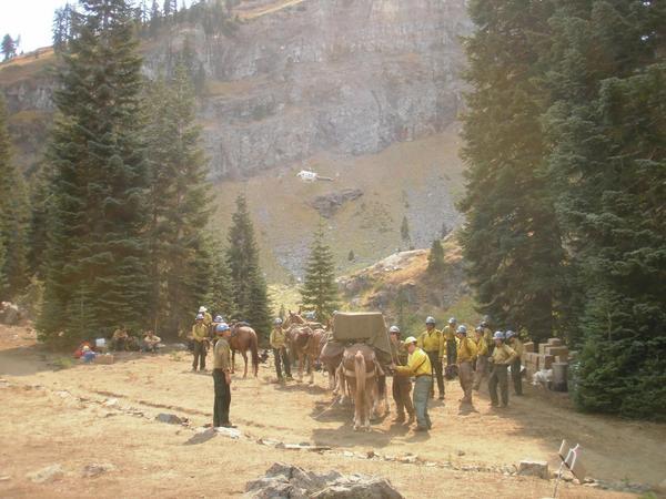 Carson Hotshots being supplied by mule packtrain on the Klamath NF #HappyCampComplex #Wilderness50 @USFSSouthwest http://t.co/Azk2EiyKS9