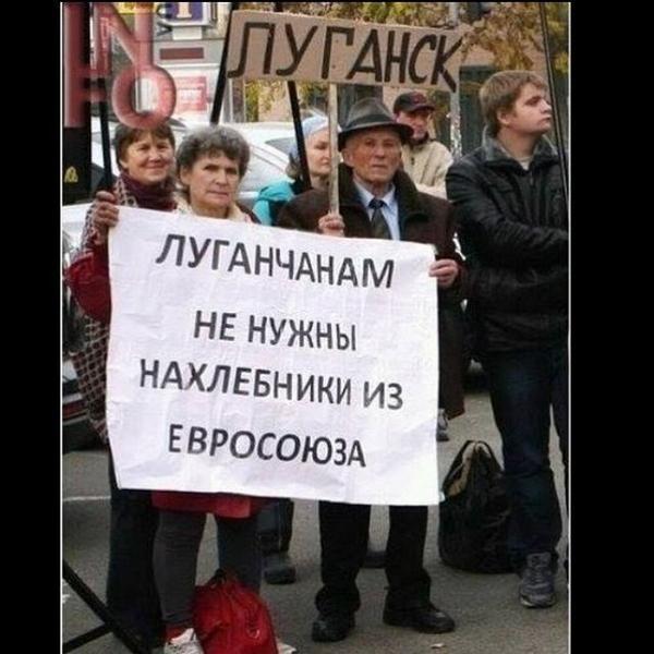 В результате обстрелов повреждены линии газопровода на Луганщине, - ОВГА - Цензор.НЕТ 3838