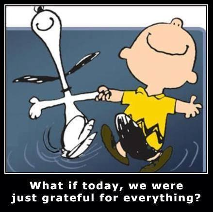 What if, today, we were just grateful for everything? #Gratitude https...