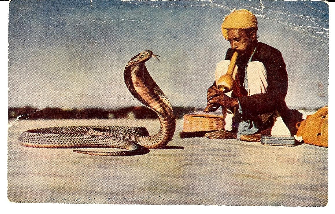 """""""Be a scientist when you work, and a snake charmer when you present."""" https://t.co/xLaSdmnjHO http://t.co/HflGrtaXRy"""