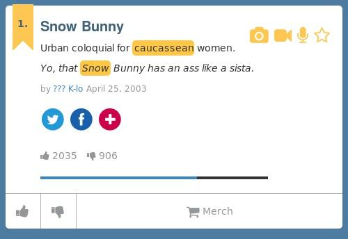 Definition of a snow bunny