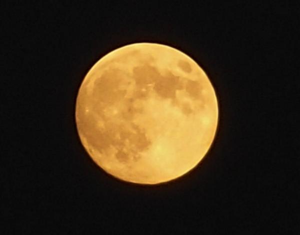今日の月(18:00)*明るい時間の方が良く写るのかなぁ、昨日よりも黄色くみえます^^ 影の具合はどうでしょうか、満月は明日ということですが* http://t.co/aTW583n8Am