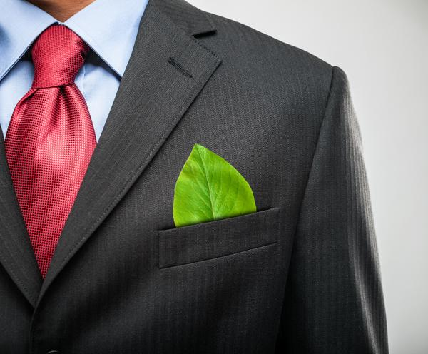 Leaders, plant the green seed. 6 steps to shift your organization to green. http://t.co/PVT9pz35f9 http://t.co/hXsOuJi6vC