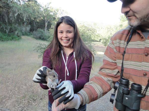 Training underrepresented students to be the next generation of naturalists.#IAmANaturalist http://t.co/3wtcezD8zk